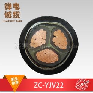禅城电缆 阻燃电力电缆ZC-YJV22