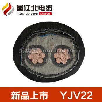 鑫辽北电线电缆 0.6/1KV YJV22铜芯交联聚乙烯绝缘双钢带铠装聚氯乙烯护套电力电缆 2*2.5