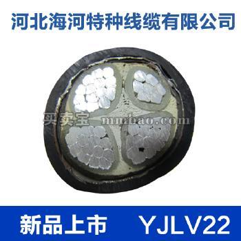 河北海河 0.6/1kV YJLV22铝芯交联聚乙烯绝缘双钢带铠装聚氯乙烯护套电力电缆 3*25+1*16