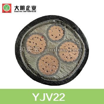 YJV22铜芯交联聚乙烯绝缘双钢带铠装聚氯乙烯护套电力电缆 4*50