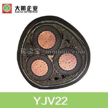 YJV22铜芯交联聚乙烯绝缘双钢带铠装聚氯乙烯护套电力电缆 3*50