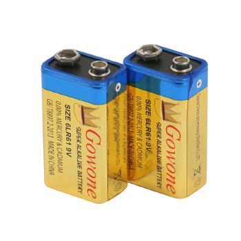 Gowone购旺 无汞环保碱性电池出口简装 9V电池 6LR61 无线话筒万用表烟雾报警器电池
