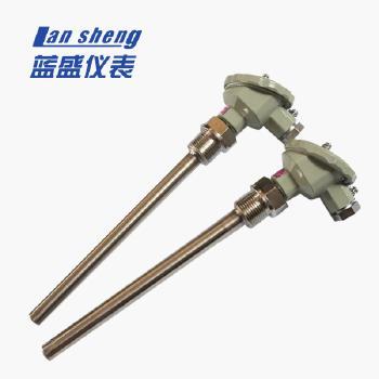蓝盛 WZP系列装配式铂电阻 WZP-270S L=600*450