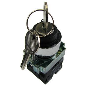 德力西电气 按钮开关;LAY5s-BG 二位自锁左抽出 1NO(标准型钥匙钮