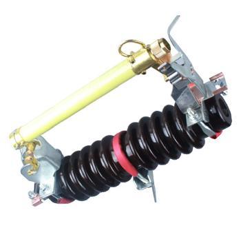 德力西电气 高压熔断器;RW11-12KV 100A 3只/组