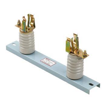 德力西电气 高压熔断器;XRNT1-12KV 底座