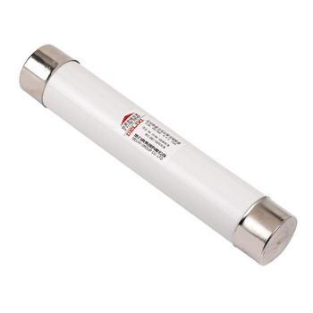 德力西电气 高压熔断器;XRNP1-12KV 0.5A 体 (Φ25×195)