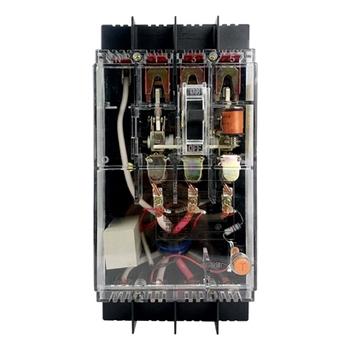 德力西塑壳漏电断路器DZ15LE-100T/4901 100A  30mA 透明