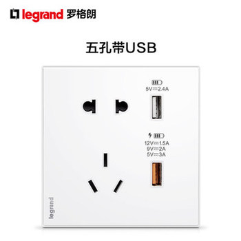 罗格朗逸远素月白系列五孔带USB插座