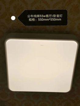 纯晖卧室灯 MX-B055046A-BS
