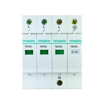 天正电气 TGDY55系列防浪涌保护器 TGDY55II-60 3P+N 4070040108