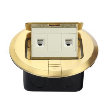 华工电气  铜合金圆形弹起式地面插座电话+电脑 HGD-2Y