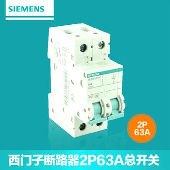 【西门子】小型断路器2P总开关 63A